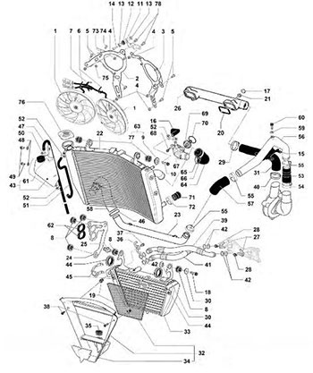Kawasaki Parts Diagrams Uk